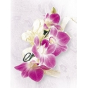 Deep Purple Orchid Corsage