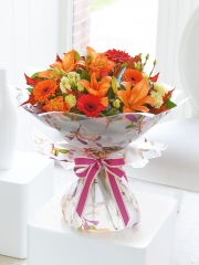 Glorious Shades Hand-Tied with Belgian Chocolates
